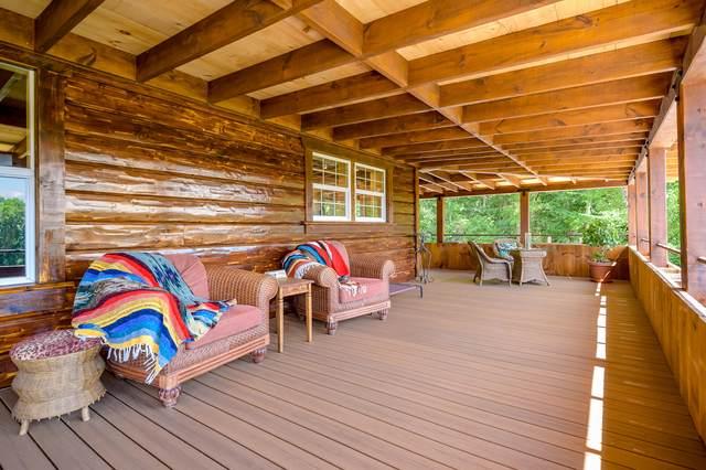 1547 Rivermeade Loop Rd, Galena, MO 65656 (MLS #60199068) :: Sue Carter Real Estate Group