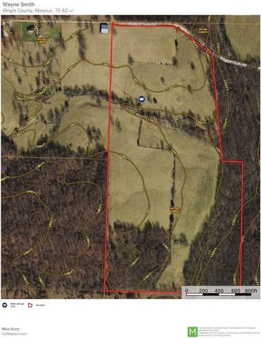 000 Robertson Road, Grovespring, MO 65662 (MLS #60199141) :: Sue Carter Real Estate Group