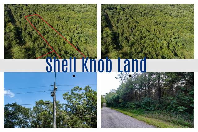 000 N Millwood St., Shell Knob, MO 65747 (MLS #60199215) :: Sue Carter Real Estate Group