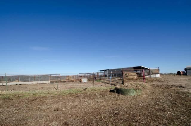 0 Springer Farms Tract B, Crane, MO 65633 (MLS #60199268) :: Sue Carter Real Estate Group