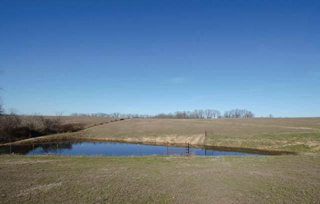 0 Springer Farms Tract A, Crane, MO 65633 (MLS #60199272) :: Sue Carter Real Estate Group