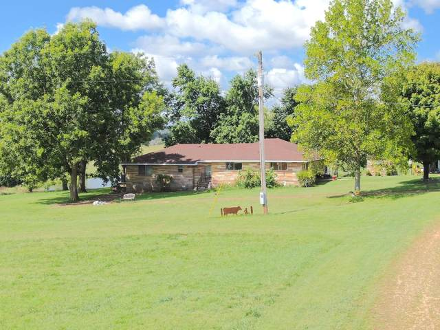1435 County Road 359, Thayer, MO 65791 (MLS #60199846) :: United Country Real Estate