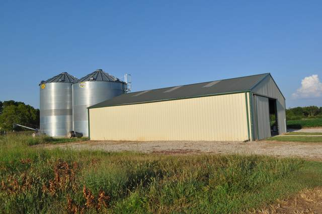 6472 State Hwy O, Ash Grove, MO 65604 (MLS #60199893) :: Evan's Group LLC