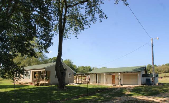 767 Holt Spring Road, Marionville, MO 65705 (MLS #60200388) :: Sue Carter Real Estate Group