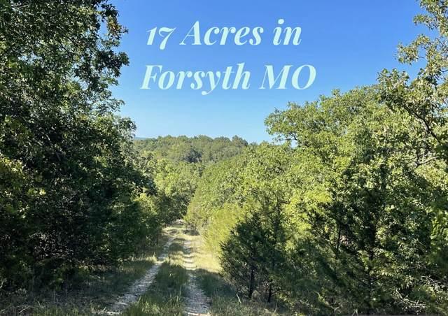 000 Arroyo, Forsyth, MO 65653 (MLS #60200508) :: Sue Carter Real Estate Group