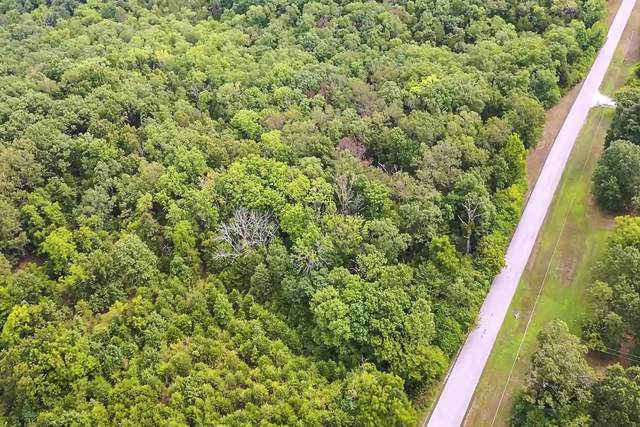 000 Long View, Forsyth, MO 65653 (MLS #60200523) :: Sue Carter Real Estate Group