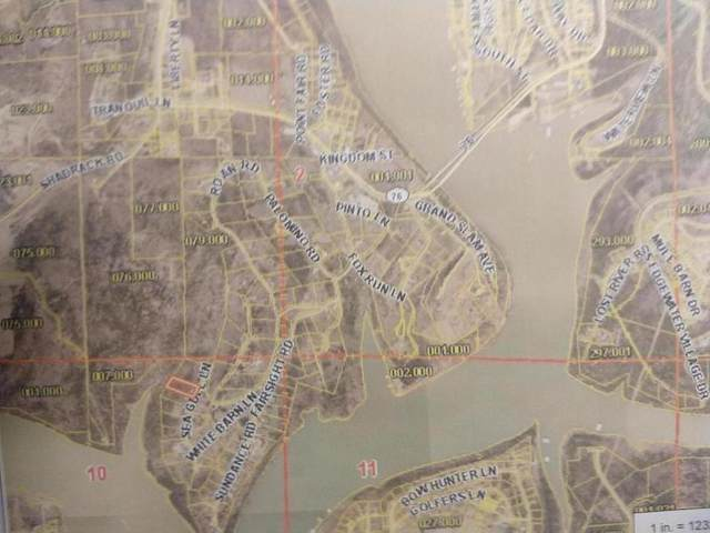 55 Sea Gull Lane (Lot 55), Cape Fair, MO 65624 (MLS #60200739) :: Sue Carter Real Estate Group