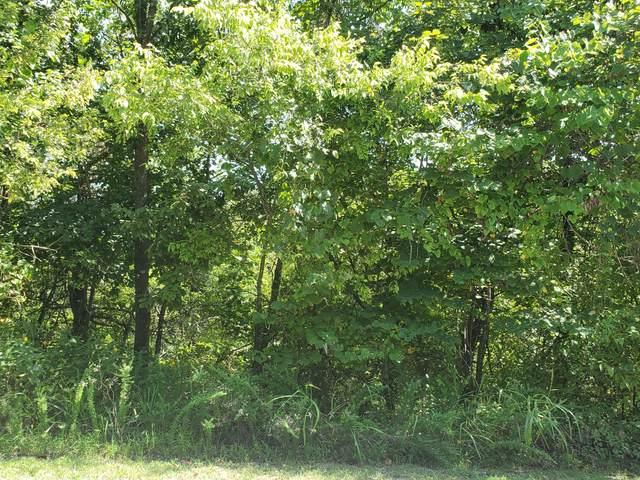 0 Hallie Drive, Blue Eye, MO 65611 (MLS #60200796) :: Sue Carter Real Estate Group