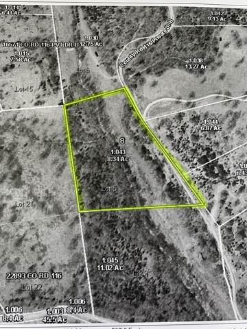 116 County Road, Macomb, MO 65702 (MLS #60200853) :: Lakeland Realty, Inc.