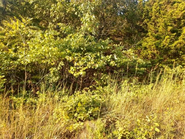 Lot 96 Green Oak Ridge Subdivision #1, Pittsburg, MO 65724 (MLS #60200882) :: Team Real Estate - Springfield