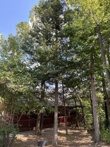 275 Oakridge Drive #2, Branson, MO 65616 (MLS #60200940) :: Tucker Real Estate Group | EXP Realty