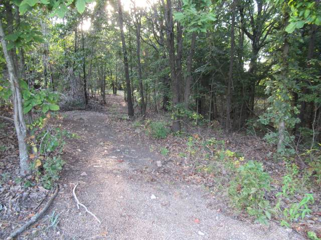 9375 N Lookout Lane, Pleasant Hope, MO 65725 (MLS #60201085) :: Tucker Real Estate Group | EXP Realty