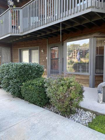 150 Sunken Forest Drive #231, Forsyth, MO 65653 (MLS #60201134) :: Team Real Estate - Springfield