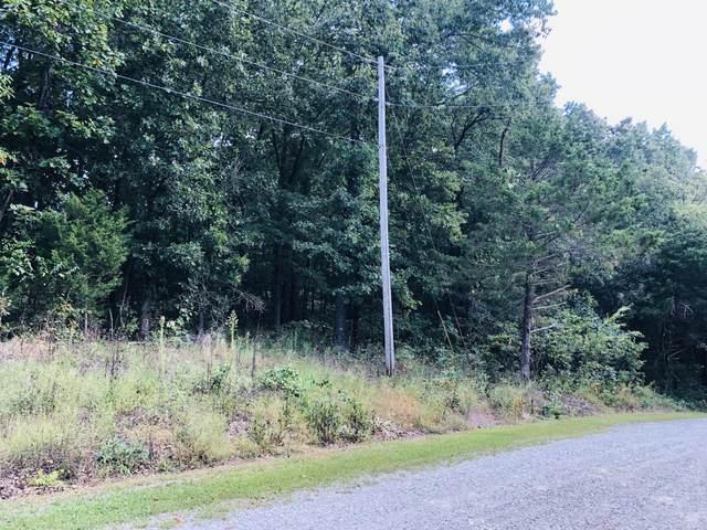 000 Red Bud Lane, Ridgedale, MO 65739 (MLS #60201141) :: Sue Carter Real Estate Group