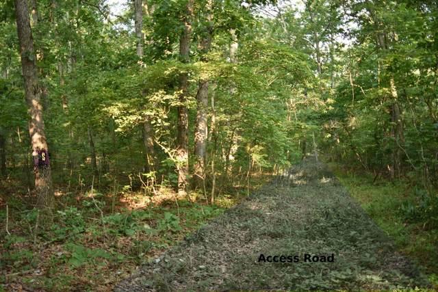 000 State Hwy Y, Elk Creek, MO 65464 (MLS #60201201) :: Sue Carter Real Estate Group