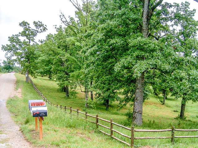 0000 County Road 640, Theodosia, MO 65761 (MLS #60201252) :: Sue Carter Real Estate Group