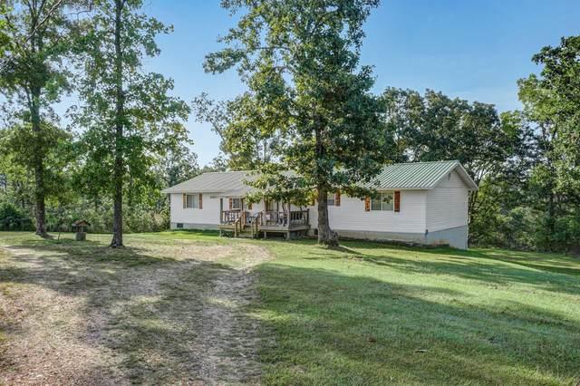 10248 Highway 5, Grovespring, MO 65662 (MLS #60201439) :: Sue Carter Real Estate Group