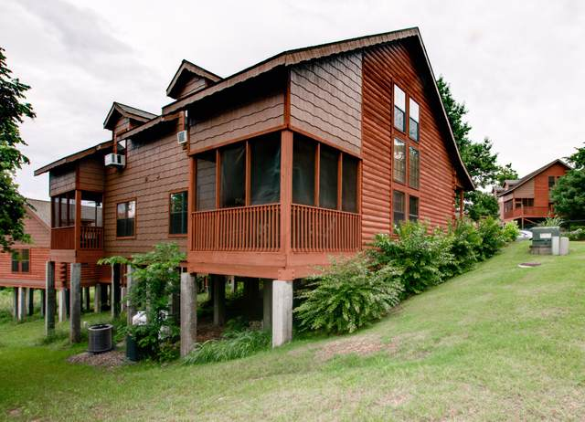 318 Summer Drive, Branson, MO 65616 (MLS #60201445) :: Sue Carter Real Estate Group