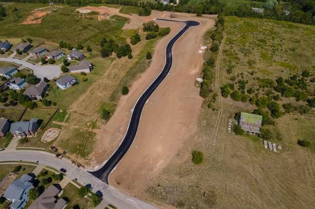 Lot 118 Creek Bridge Phase 3, Ozark, MO 65721 (MLS #60201599) :: Sue Carter Real Estate Group