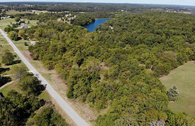 000 Georgia Road, Strafford, MO 65757 (MLS #60201647) :: Clay & Clay Real Estate Team