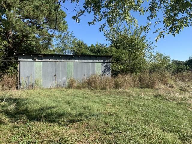 307 Bamber Street, Mammoth Spring, MO 72554 (MLS #60201729) :: Sue Carter Real Estate Group