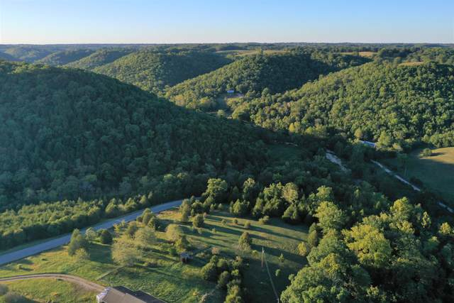 4 Hilltop Ranches Road, Reeds Spring, MO 65737 (MLS #60201813) :: Team Real Estate - Springfield