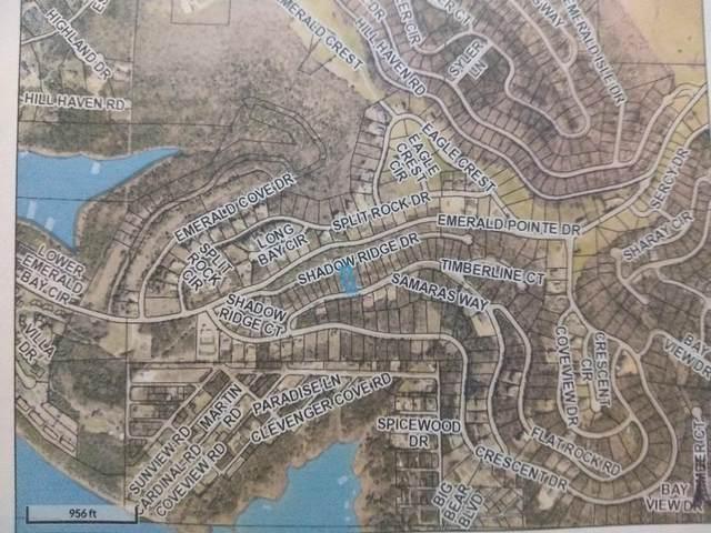 19 Shadow Ridge Drive (Lot 19), Hollister, MO 65672 (MLS #60201818) :: Sue Carter Real Estate Group