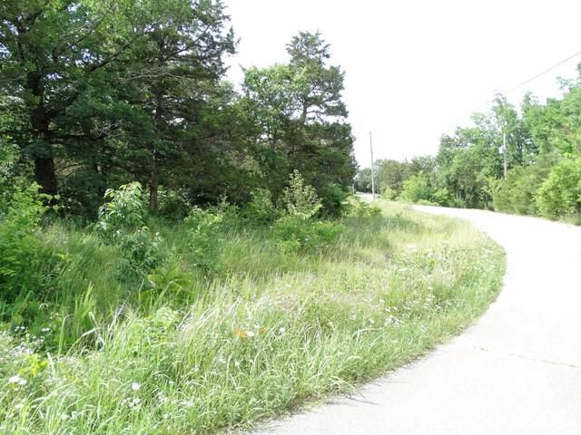 000 Dockhouse Lane, Galena, MO 65656 (MLS #60201906) :: Lakeland Realty, Inc.