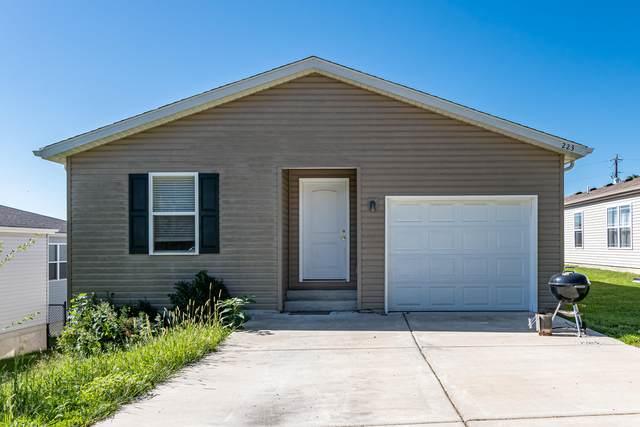 223 Elizabeth Drive, Branson, MO 65616 (MLS #60201975) :: Sue Carter Real Estate Group
