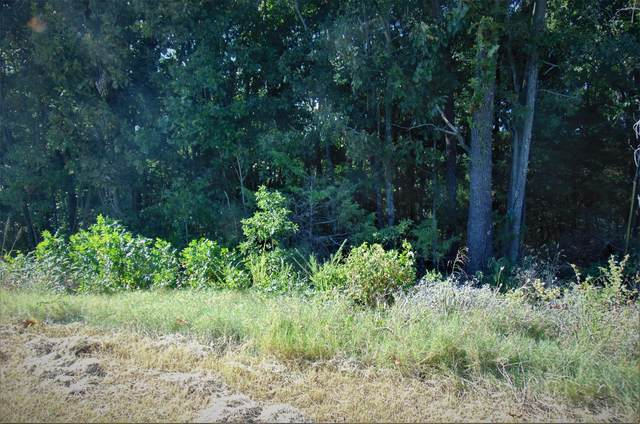 Lot 15 Midview Drive, Kimberling City, MO 65686 (MLS #60202001) :: Sue Carter Real Estate Group