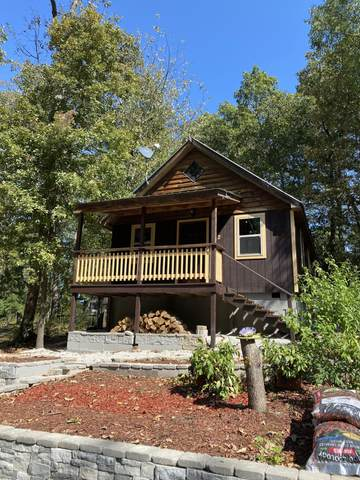 272 Woodward Drive, Branson, MO 65616 (MLS #60202140) :: Team Real Estate - Springfield