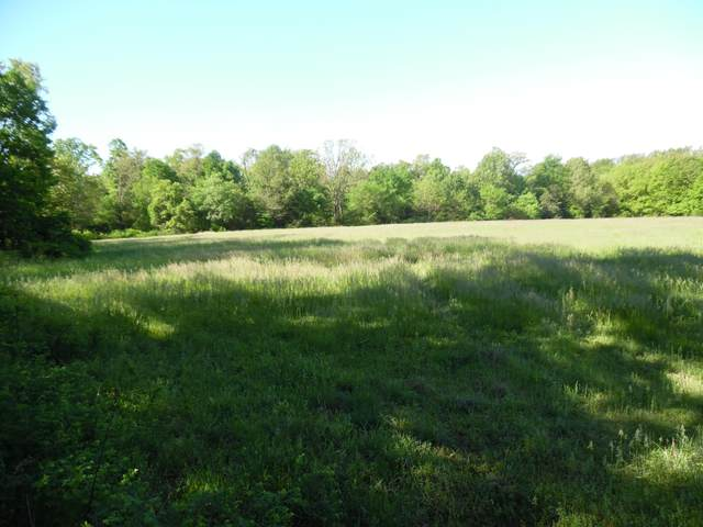 Xoxo Farm Road 2112, Purdy, MO 65734 (MLS #60202331) :: Sue Carter Real Estate Group