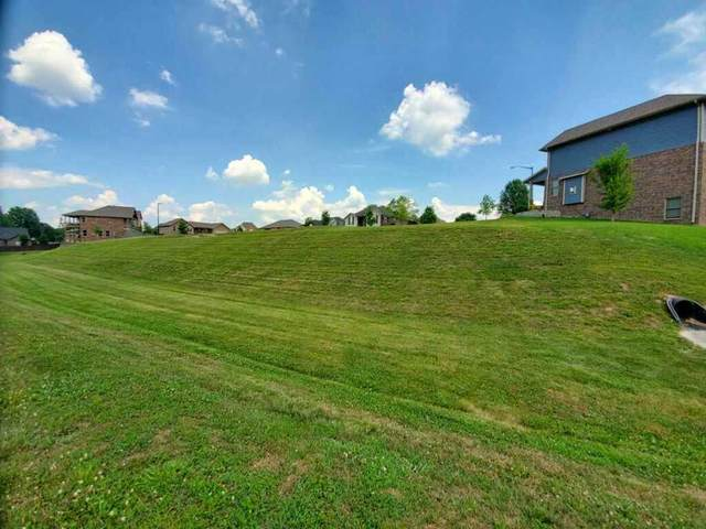 Lot 14 Union Hill Replat Lots 10-14, Ozark, MO 65721 (MLS #60202339) :: Sue Carter Real Estate Group