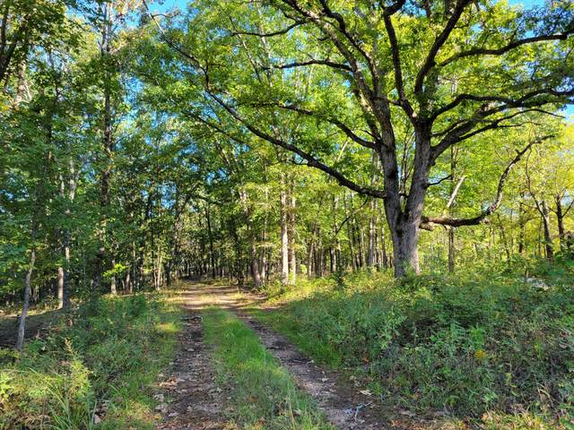 000 Dogwood Road, Mountain Grove, MO 65711 (MLS #60202343) :: Sue Carter Real Estate Group