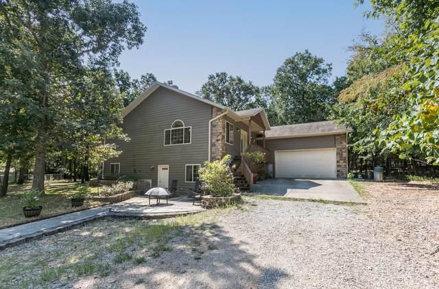 73 Wolfe Lane, Branson, MO 65616 (MLS #60202464) :: Sue Carter Real Estate Group