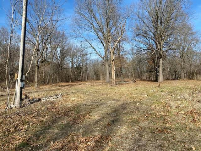 4449 W Farm Road 174, Brookline, MO 65619 (MLS #60202522) :: Sue Carter Real Estate Group