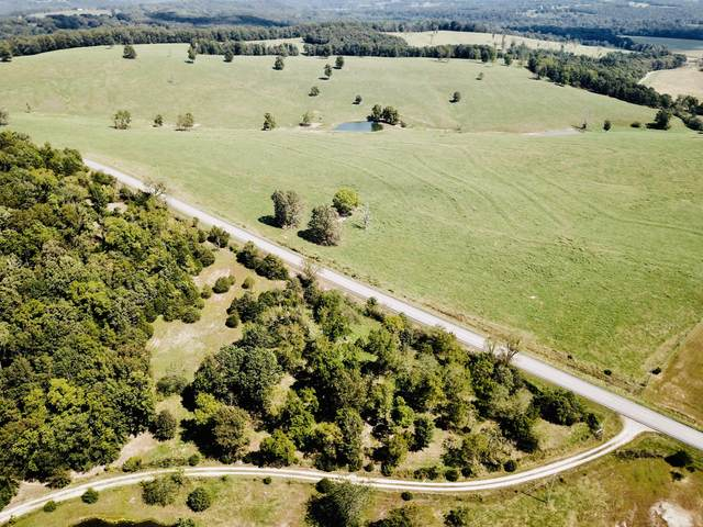 00 Highway 5, Hartville, MO 65667 (MLS #60202573) :: Sue Carter Real Estate Group