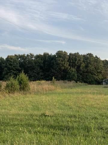 295 N Ranch Road, Fair Grove, MO 65648 (MLS #60202625) :: Sue Carter Real Estate Group