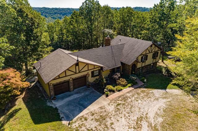 1252 S Marshfield Road, Bruner, MO 65620 (MLS #60202739) :: Sue Carter Real Estate Group