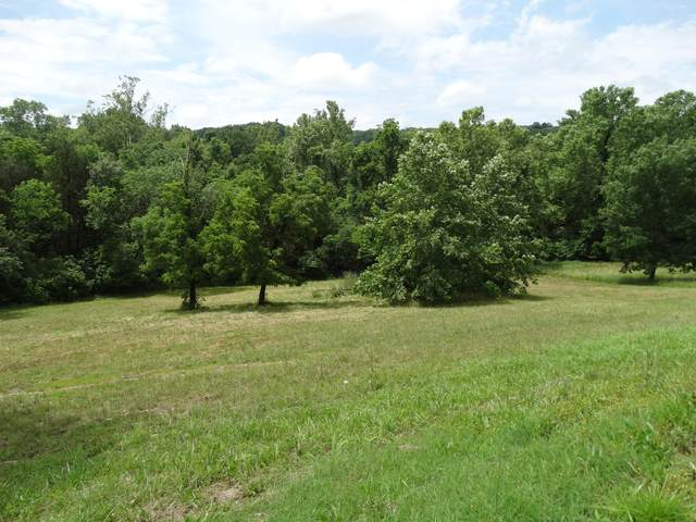 000 Bywater Dr, Cape Fair, MO 65624 (MLS #60202764) :: Sue Carter Real Estate Group
