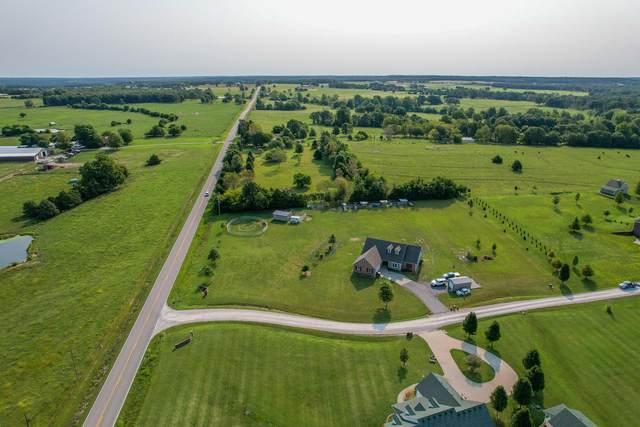 53 Village Drive, Marshfield, MO 65706 (MLS #60202773) :: The Real Estate Riders