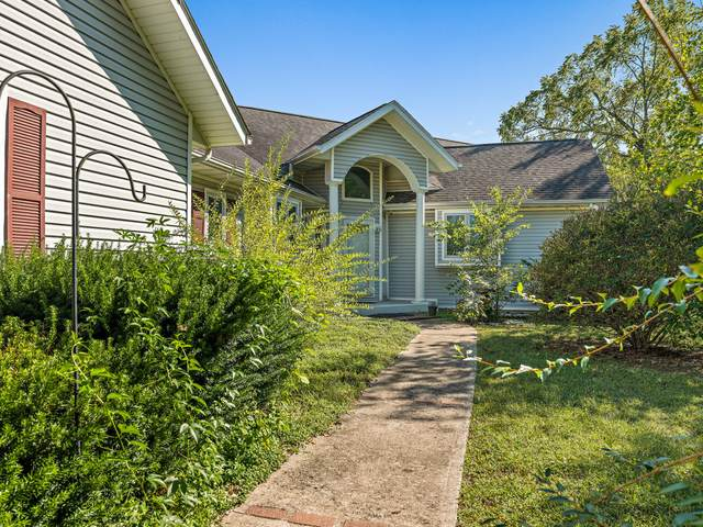 40 Rocky Top Road, Cape Fair, MO 65624 (MLS #60202828) :: Sue Carter Real Estate Group