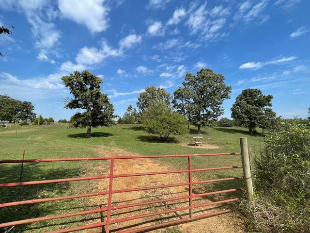 000 Center, Rogersville, MO 65742 (MLS #60202877) :: The Real Estate Riders
