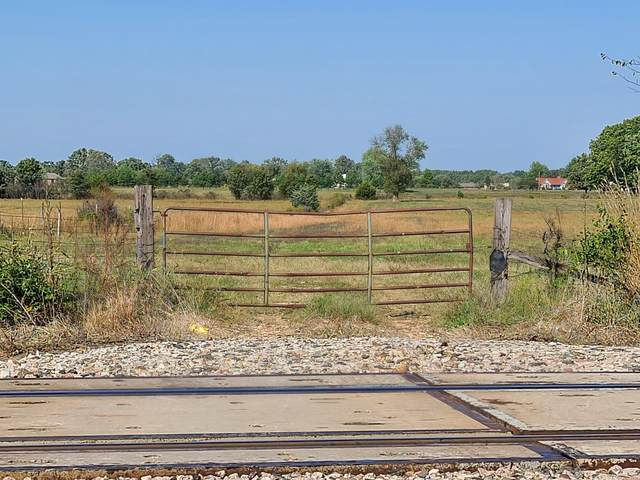 000 Highway 60, Rogersville, MO 65742 (MLS #60202888) :: The Real Estate Riders