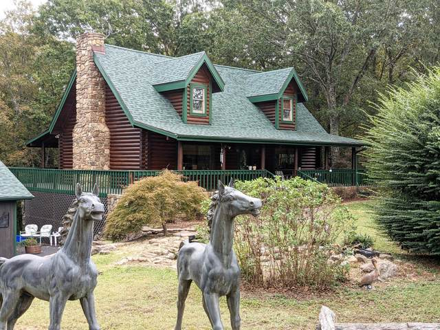 1906 State Hwy 265, Hollister, MO 65672 (MLS #60202973) :: Sue Carter Real Estate Group