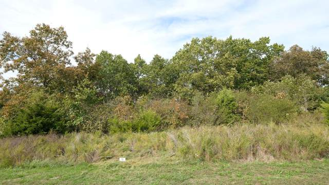000 N View  Dr. Lot 176, Branson, MO 65616 (MLS #60202991) :: Sue Carter Real Estate Group