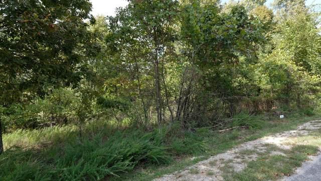 329 N Ridge Place Lot 119, Branson, MO 65616 (MLS #60203001) :: Sue Carter Real Estate Group