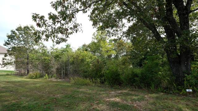 342 N View Drive Lot 163, Branson, MO 65616 (MLS #60203002) :: Sue Carter Real Estate Group