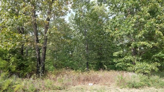 385 N Ridge Place Lot 117, Branson, MO 65616 (MLS #60203005) :: Sue Carter Real Estate Group