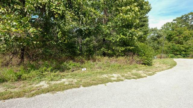 413 N Ridge Place Lot 116, Branson, MO 65616 (MLS #60203006) :: Sue Carter Real Estate Group